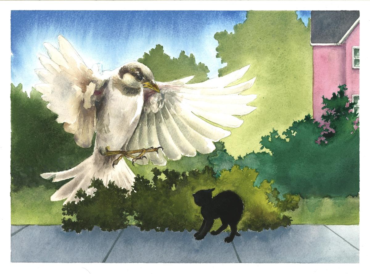 sparrow attack